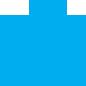 לוגו וויזדום כחול גדול